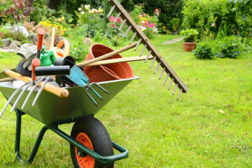 Progettazione giardini e aree verdi