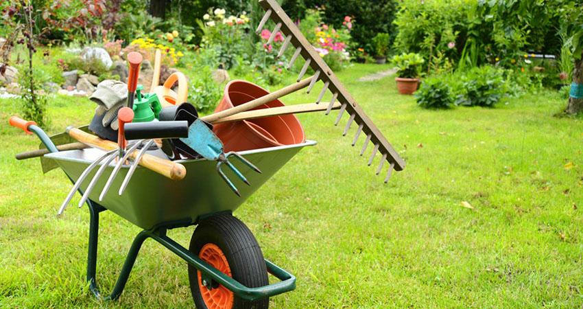 Leogarden progettazione giardini e aree verdi a roma for Progettazione giardini roma